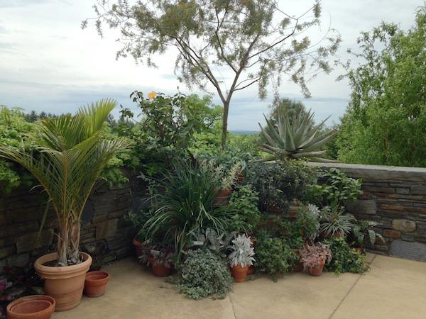 gardens 21.jpg